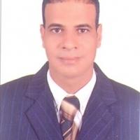 Ezzat Ahmed Alsayed