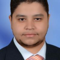 Hisham Hassan Ahmed Sayed