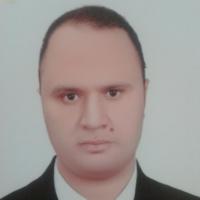 Amr Hassan aly Ibrahim